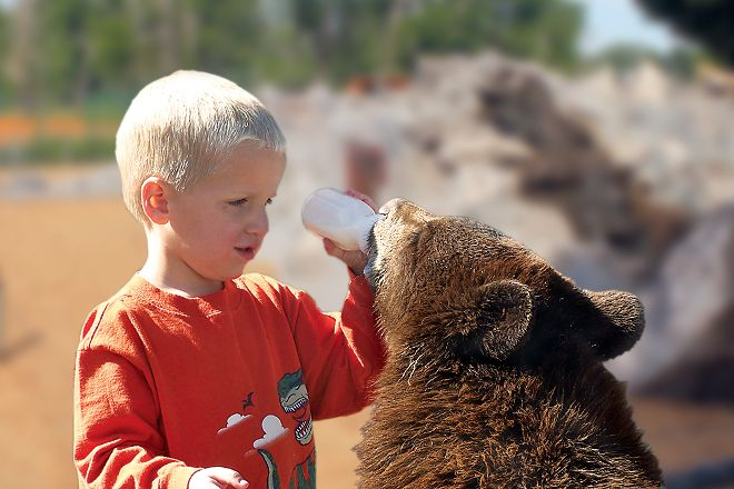 Yellowstone Bear World, Rexburg, United States