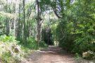 Arboretum Lussich