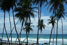 Playa El Agua, Margarita Island, Venezuela