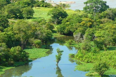 Orinoco River, Orinoco Delta, Venezuela