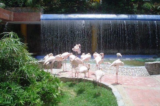 Expanzoo, Caracas, Venezuela