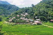 ECO Travel - Go Green Vietnam, Hanoi, Vietnam