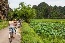 Go Viet Nam Travel