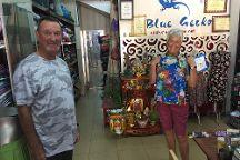 Hoi An Tailor - Blue Gecko, Hoi An, Vietnam