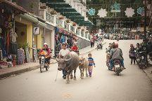 Legend Travel Group, Hanoi, Vietnam