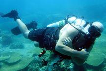 Mark Scott's Diving Vietnam