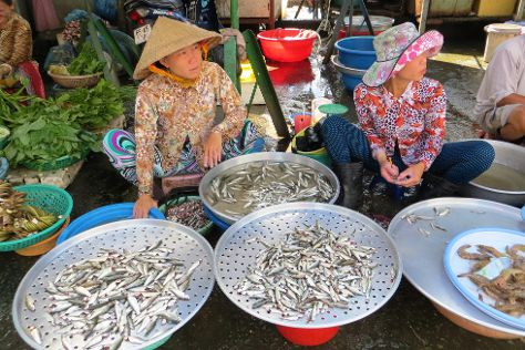 Sa Dec Market, Sa Dec, Vietnam
