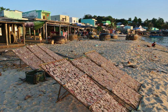 Archipelago Anthoy, Phu Quoc Island, Vietnam