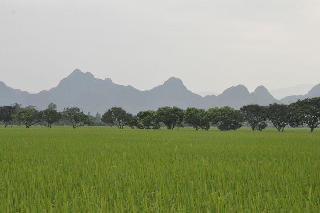 Around Hanoi, Hanoi, Vietnam