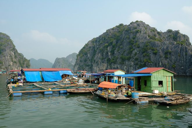 Cua Van Floating Village, Halong Bay, Vietnam