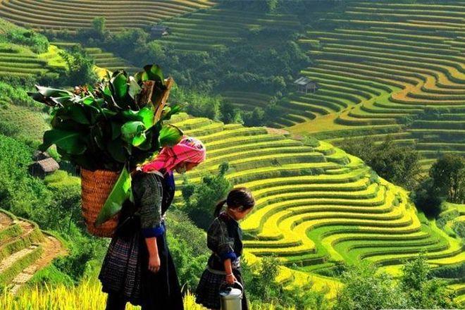 Travel to Sapa by bus - Day Tours, Hanoi, Vietnam