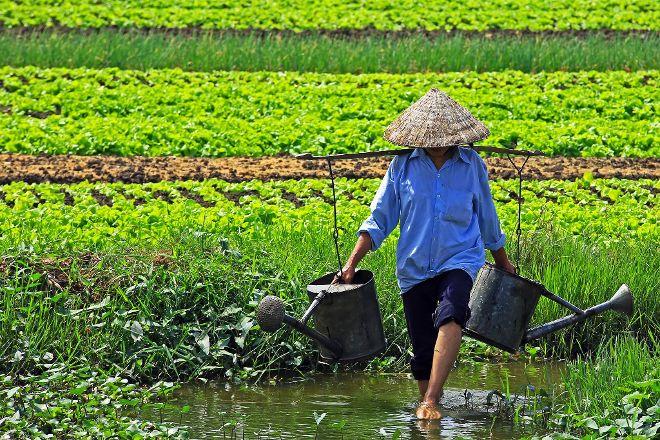 Vietland Discovery, Da Nang, Vietnam