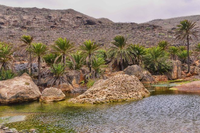 Ayhaft Canyon National Park, Socotra Island, Yemen