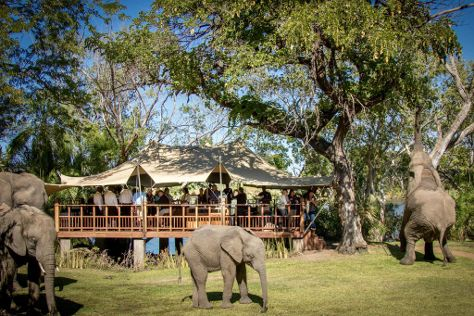 The Explorer Club, Victoria Falls, Zambia