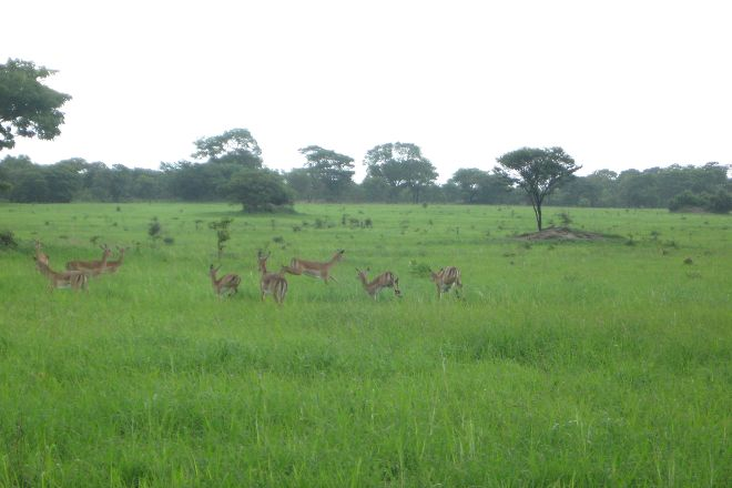 Chaminuka Game Reserve, Lusaka, Zambia