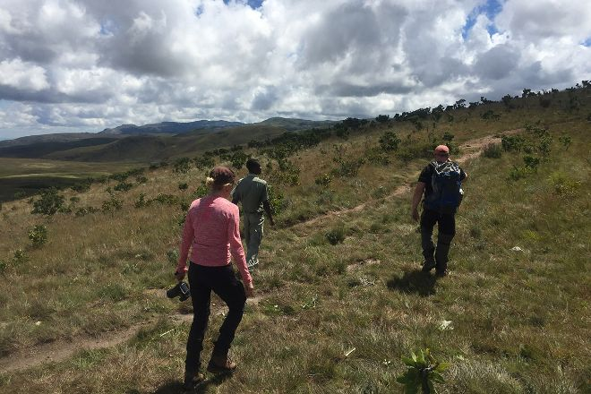 Eastern Highlands and Mutare Tours, Mutare, Zimbabwe